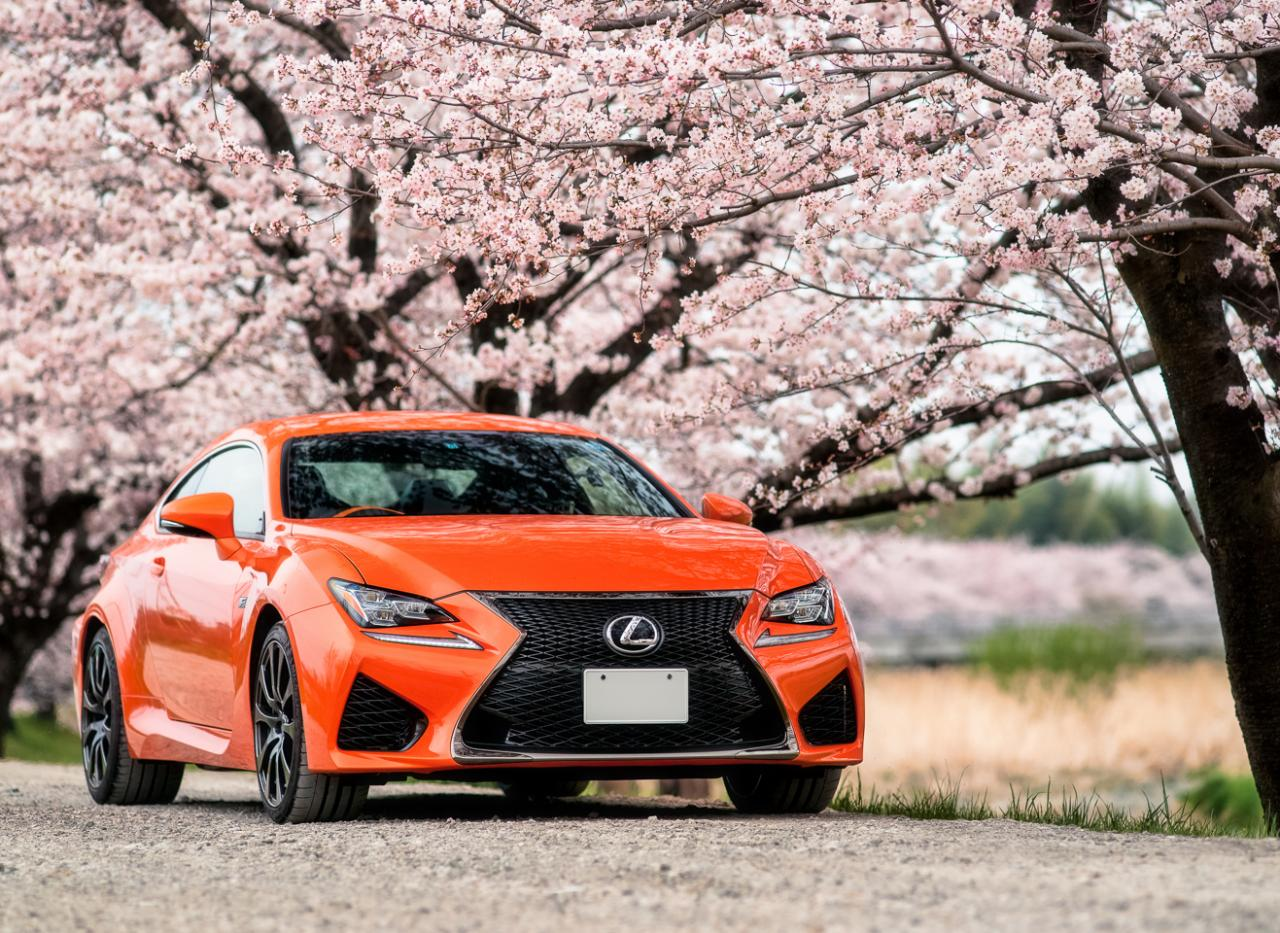 lexus rc under cherry blossoms